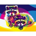 Colorful Raccoons