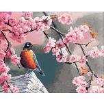 Spring starling 50x65