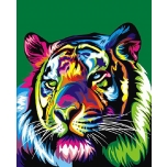 Colorful Tiger 2
