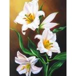 Snow-White Lilies