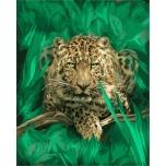 Metsik kass