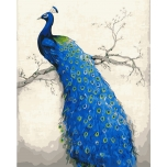 Purple peafowl 1