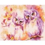 Owl duet