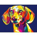 Colored Dog 2