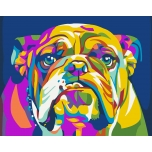 Colored Bulldog