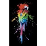 Värviline papagoi